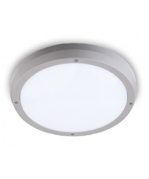 LED Ceiling Fitting